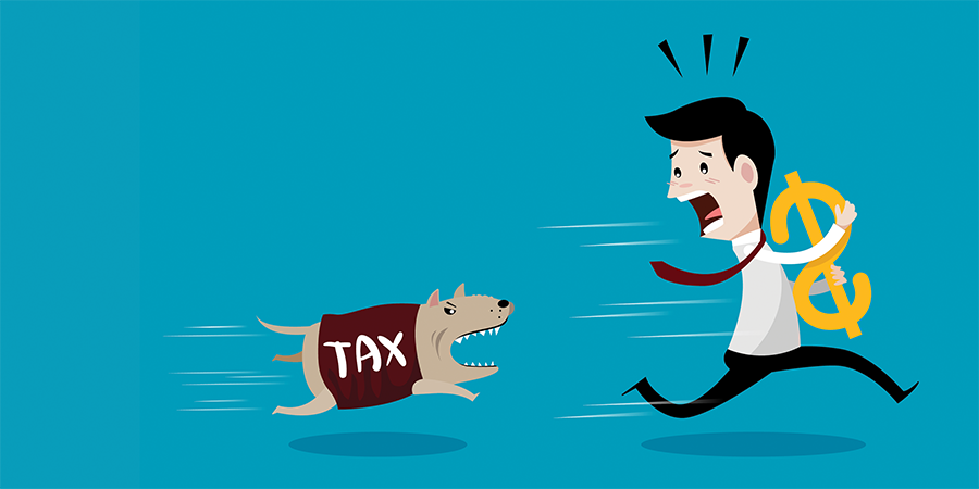 A Beginner's Guide to Understanding Your Taxes
